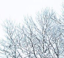 Hokkaido Snow Sticker
