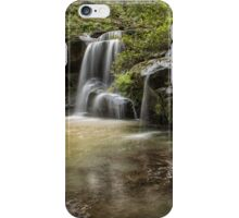 Waterfall Oasis iPhone Case/Skin