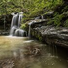 Waterfall Oasis by yolanda