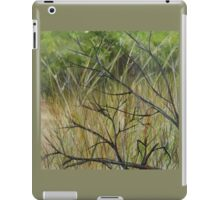Old Ruined Cottage in Coleraine - Grass Section  iPad Case/Skin