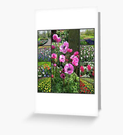 Keukenhof Collage featuring Pink Anemones Greeting Card