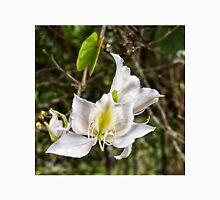 Beautiful Butterfly tree flower Unisex T-Shirt