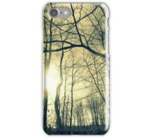 Winter snow  iPhone Case/Skin