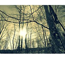 Winter snow  Photographic Print