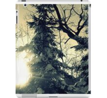 Winter trees iPad Case/Skin