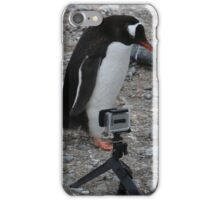 Gentoo Penguin Antarctica taking a selfie (2)  iPhone Case/Skin