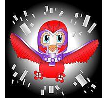 Magneto Bird Photographic Print