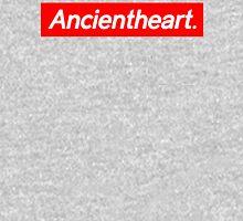 Ancientheart Box Logo Hoodie Hoodie