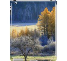 Landscape in Quebec  iPad Case/Skin