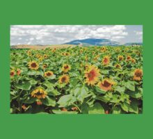 Blooming sunflowers in a field Photographed in Israel in May One Piece - Short Sleeve