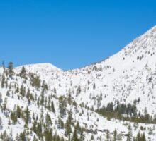 White Snowy Valley Sticker