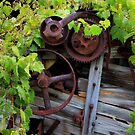Overgrown Machinery by Dave Hare