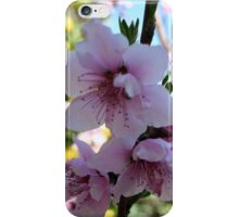 Pastel Shades of Peach Tree Blossom iPhone Case/Skin