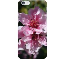 Peach Tree Blossom With Garden Background iPhone Case/Skin