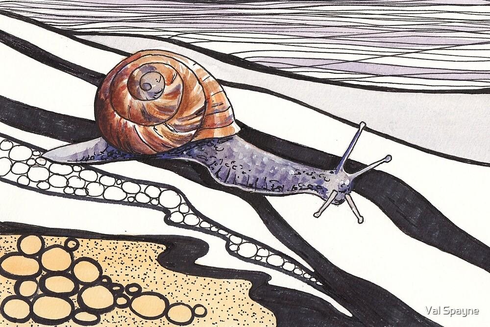 Snail Trail by Val Spayne