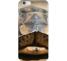 Tortoise Hiding In Its Shell  iPhone Case/Skin