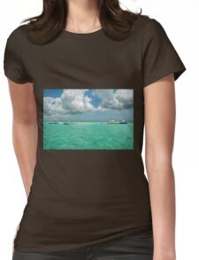 Stingray Adventure Womens Fitted T-Shirt