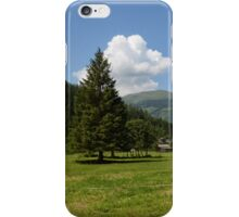 Path through the Valley iPhone Case/Skin