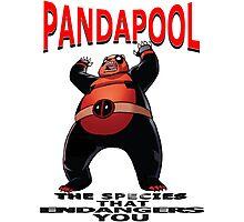 PandaPool Photographic Print