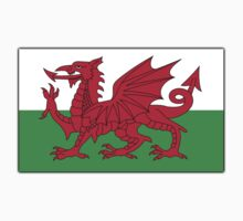 WALES, Welsh, Cymru, Welsh Flag, Pure & simple. Red Dragon of Wales One Piece - Short Sleeve
