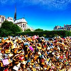 Notre Dame Cathedral Love Locks Bridge Paris by Paul Thompson Photography