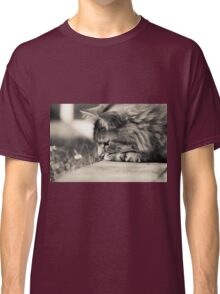 Kitty! Classic T-Shirt