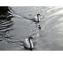 Perfect Partners.........Topsham, Devon UK Photographic Print