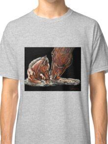 Spring 2, Rebirth Classic T-Shirt