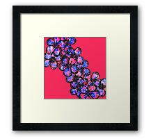 Pretty Pink and Purple Painted Flowers Framed Print