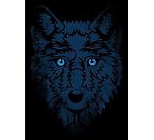 Wolf Blues. Photographic Print