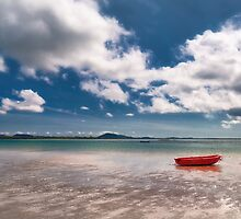 The Wee Red Rowing Boat by Kasia-D