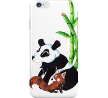 Panda Duo iPhone Case/Skin