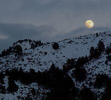 Christmas Full Moon by BettyEDuncan