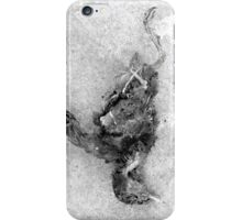 WHEN THERE ARE NO SONGS 1006 iPhone Case/Skin