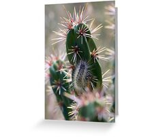 Fuzzy Caterpillar on a Cactus 1 Greeting Card