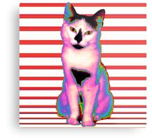 Psychedelic Kitty IV Metal Print