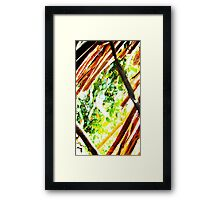In-between branches Framed Print