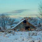 The Farm  by Nicole  Markmann Nelson