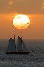 Sailboat Sunset by William C. Gladish