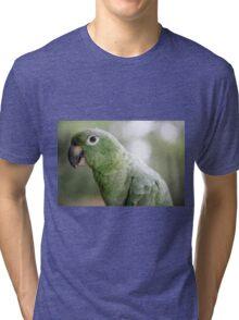 Yolanda Tri-blend T-Shirt