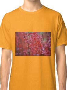 red foliage Classic T-Shirt