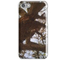 Twisted Tree iPhone Case/Skin