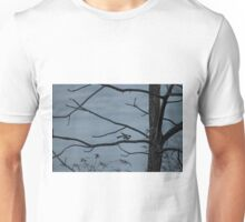A bare tree, an icy pond, and a chickadee prepares for flight Unisex T-Shirt