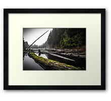 Witchcraft Mossy Morning Framed Print
