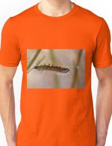 Hang in There Fuzzy Caterpillar 1 Unisex T-Shirt