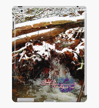 little winter waterfall iPad Case/Skin