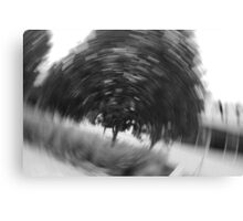 Spinning Reality Canvas Print