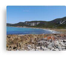Beachfront, Rocky Cape National Park, Tasmania, Australia Canvas Print
