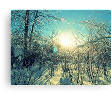 Love Winter Canvas Print