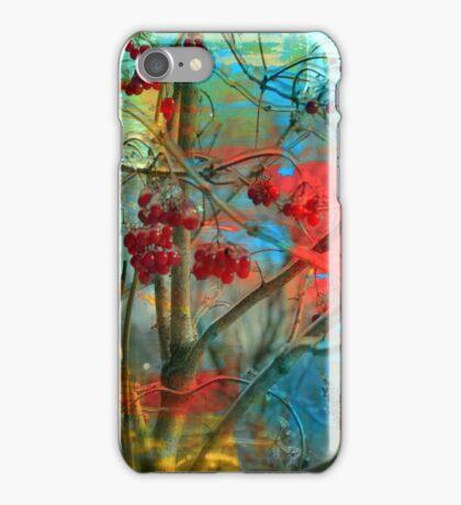 Winter berries iPhone Case/Skin